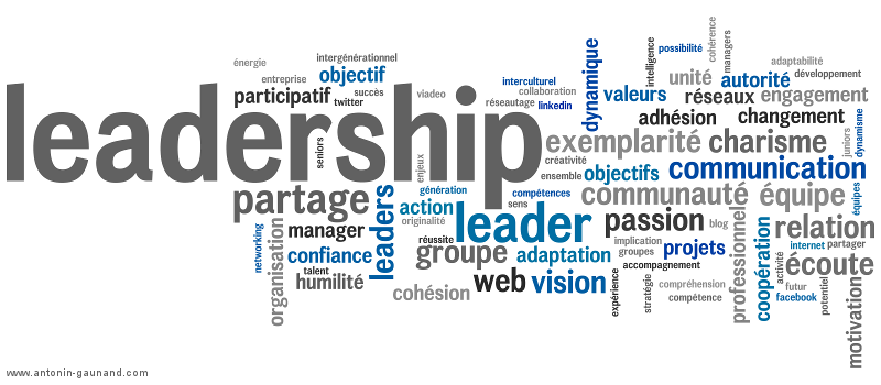formation sur le leadership pdf
